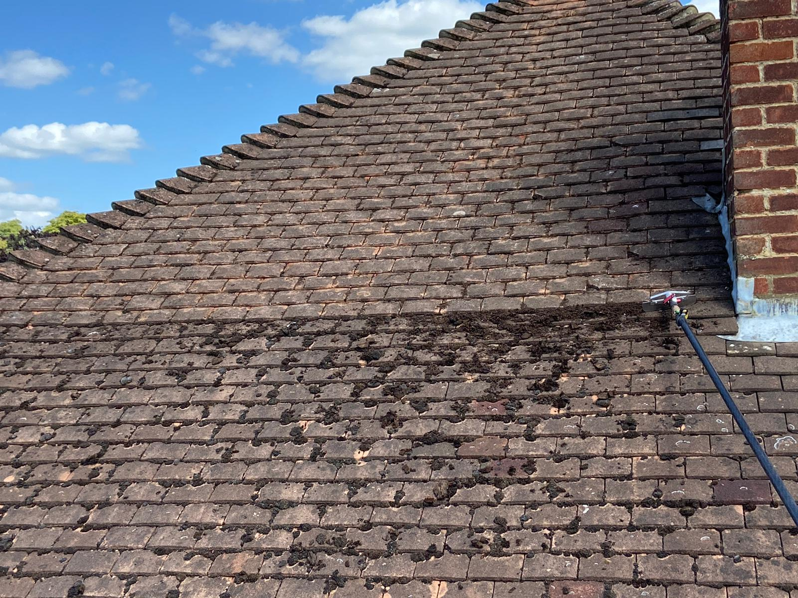 Quality Roof Cleaning Services in London - Image 2